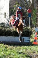 CCE (concours complet d'équitation)